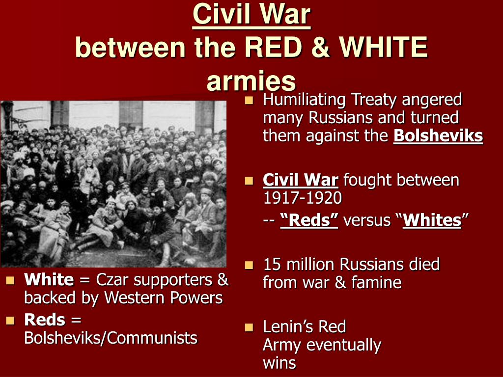 This image has an empty alt attribute; its file name is Reds-and-whites.jpg